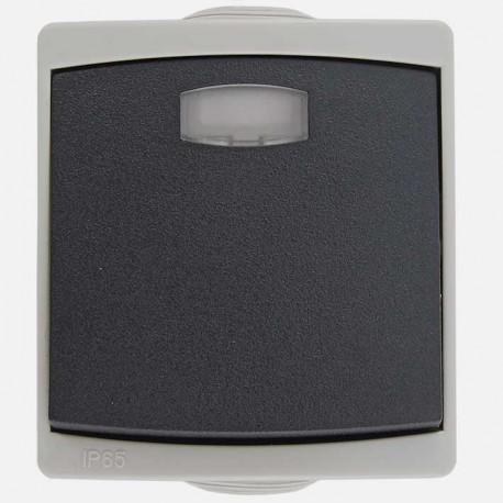 Interrupteur va et vient lumineux étanche IP55 gris