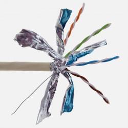 Câble grade 3TV 2200 MHZ 10 Gbit/s