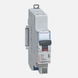 Disjoncteur phase neutre 2A borne auto Legrand 406780